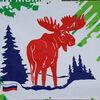 Skimarathon Demino